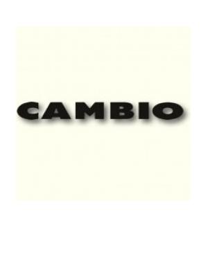 Dameskleding Cambio