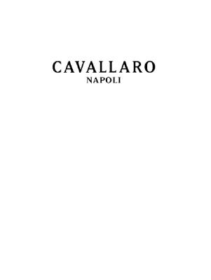 dameskleding Cavallaro